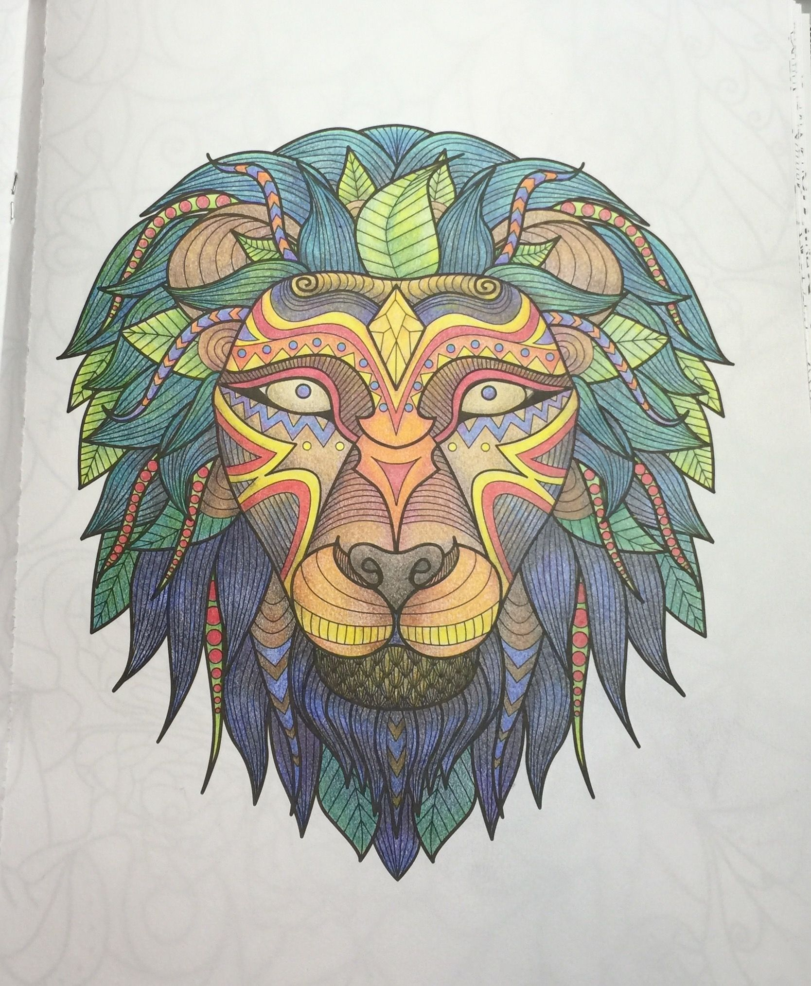 Art of Coloring Animals Lions Adult coloring and Coloring books