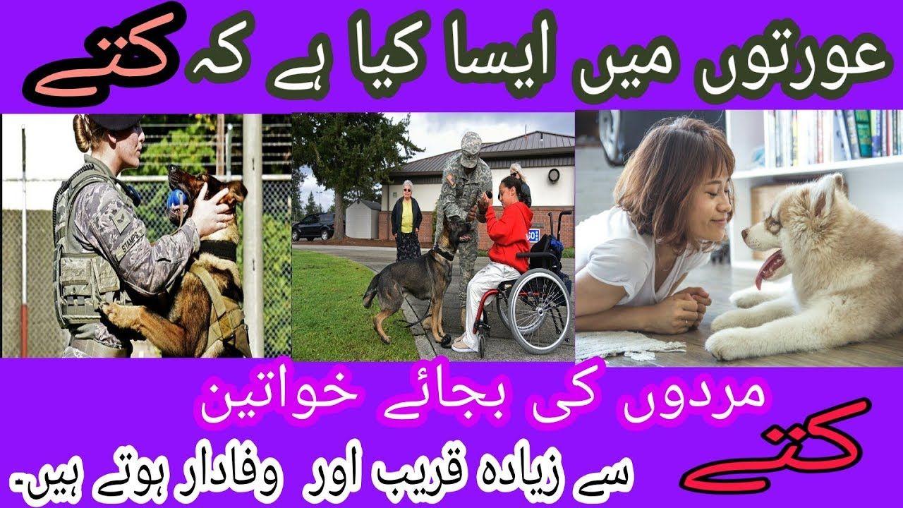 Why dogs more love Women than Men [ Hindi / Urdu ] Dogs