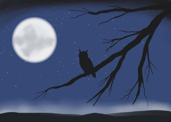 Hey, I found this really awesome Etsy listing at https://www.etsy.com/listing/221715022/midnight-owl-digital-art-painting