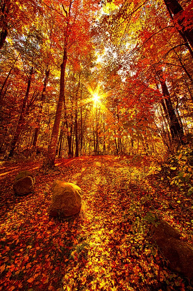 Out Here By Phil Koch On 500px Photo Paysage Magnifique Paysage Automne Paysage Automnal