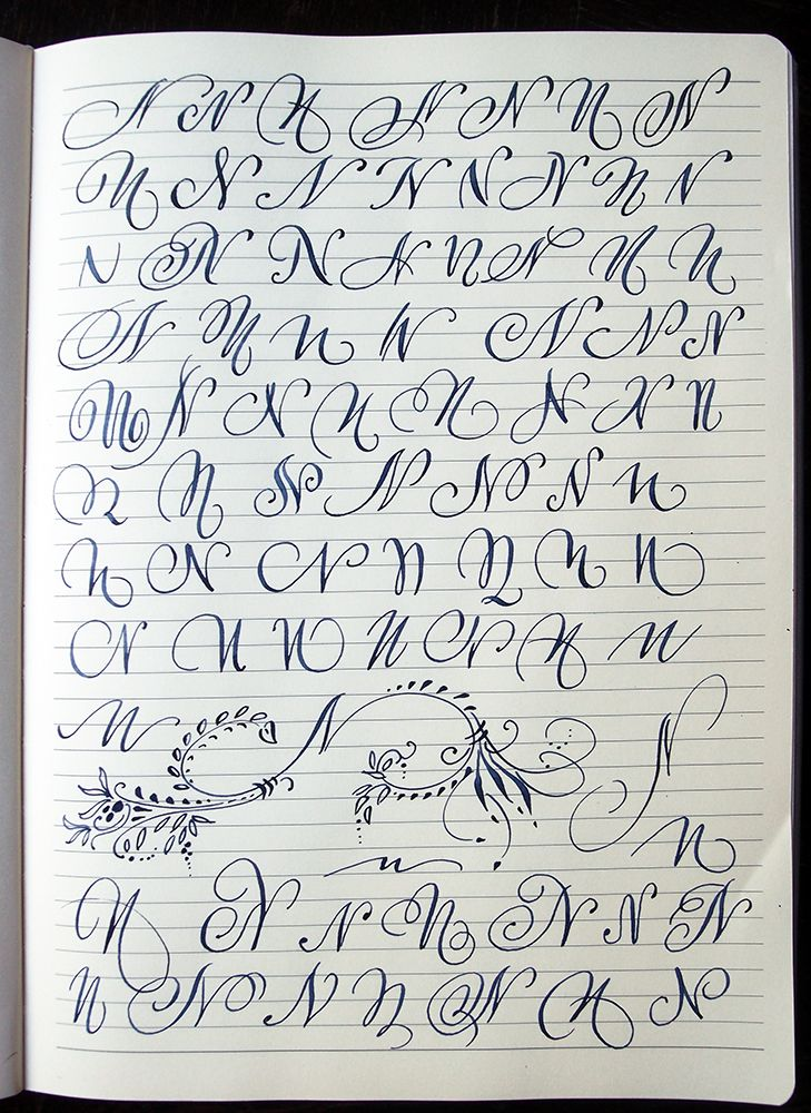 Majuscule N Variants By Polish Calligrapher Barbara Galinska On Behance