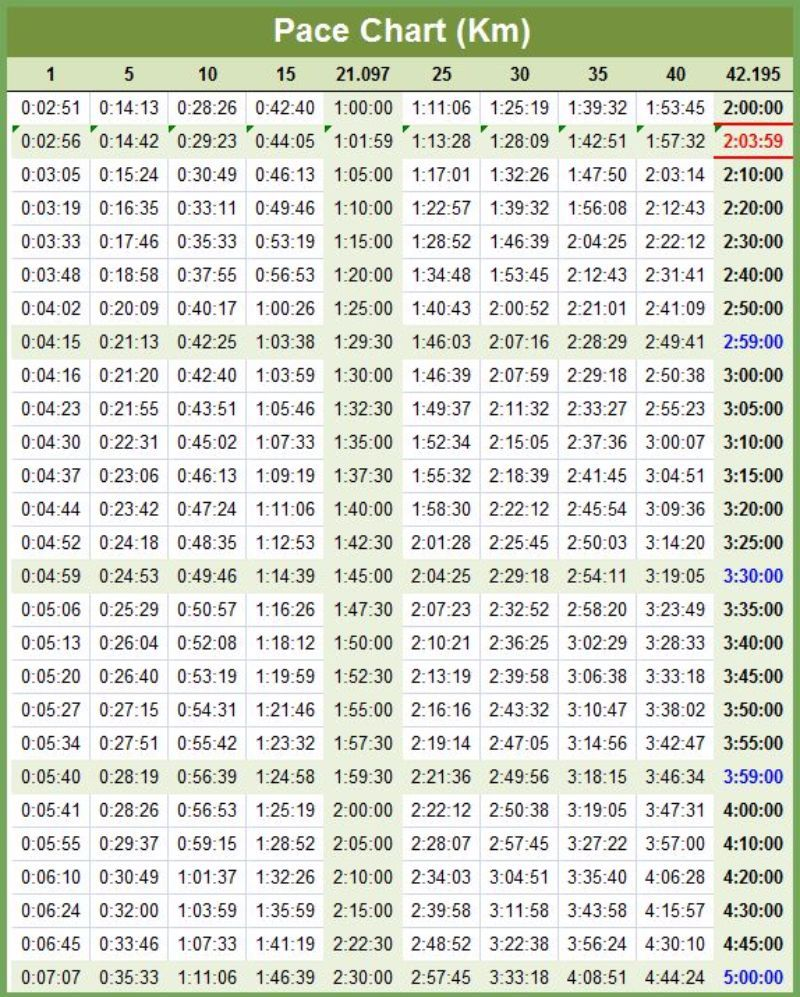 Half marathon pace chart free charts sample documents in pdf run like  also rh pinterest