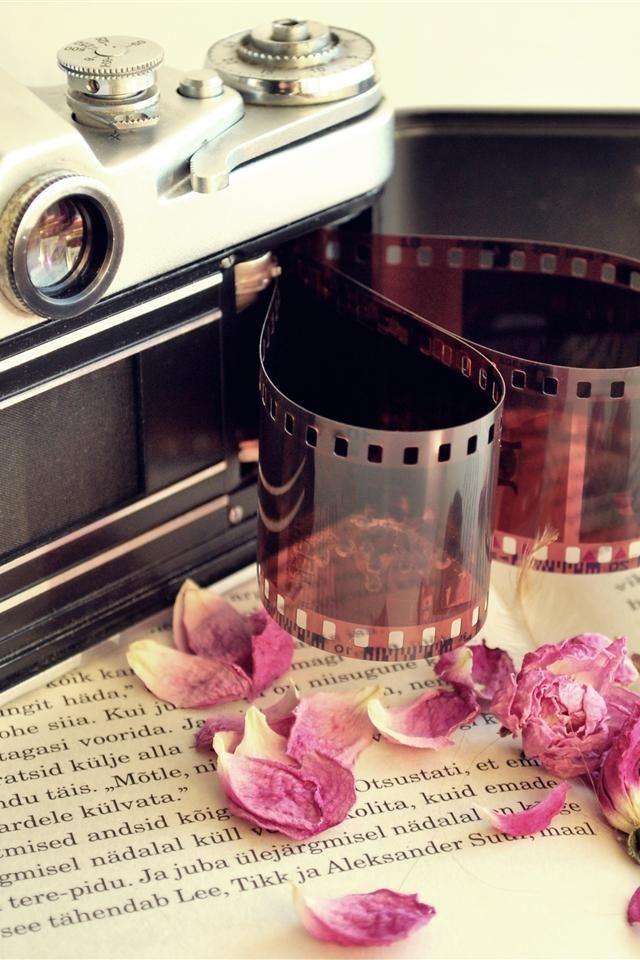 409799ee6a6 petals, vintage camera & film. So glad my new camera no longer needs film.