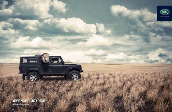 Land Rover Defender: Lion