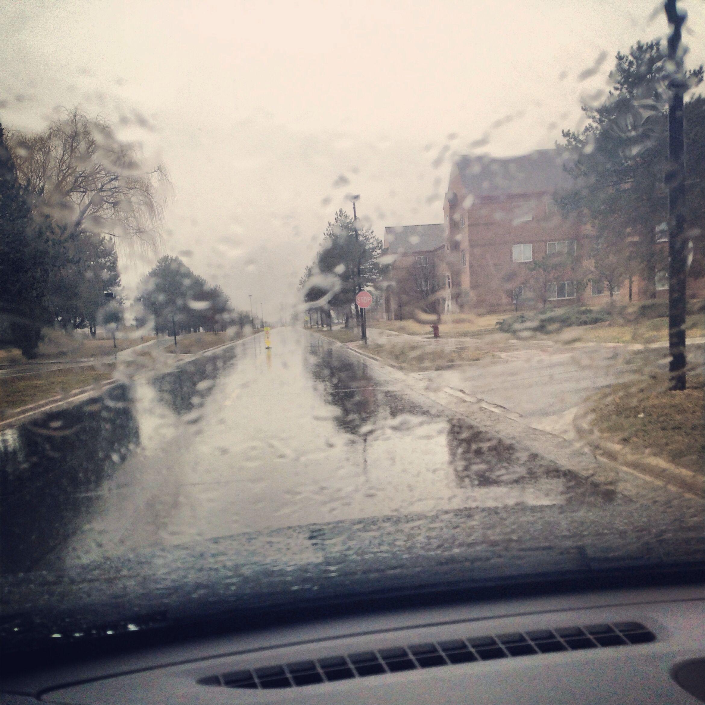 Rain really is beautiful.
