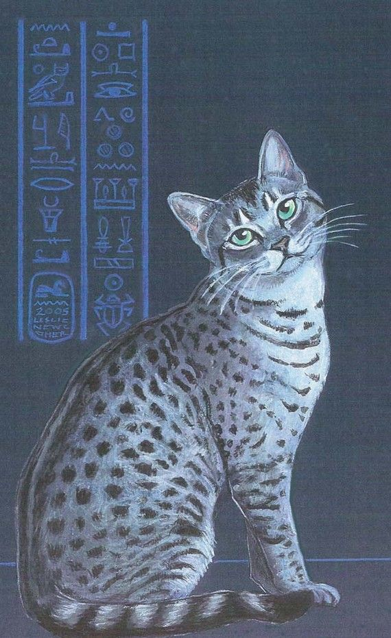 Silver Egyptian Mau, print by Eyedeas on Etsy | Art Cats | Pinterest ...