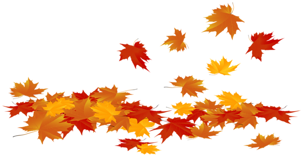 Fallen Autumn Leaves Png Clip Art Image Daun Png