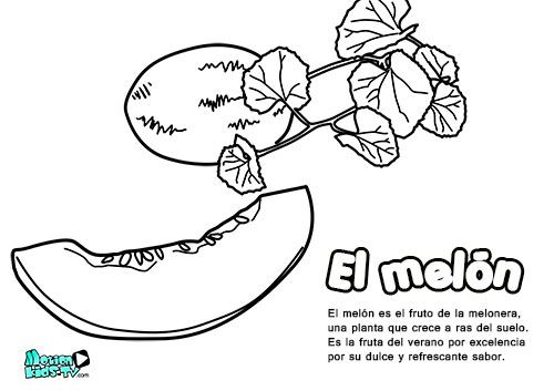 Dibujos colorear para niños, el melón. Educativos frutas y verduras ...