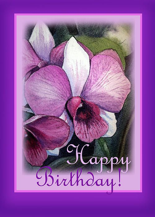Happy Birthday Orchids Greeting Card Orchid Greeting Card Happy