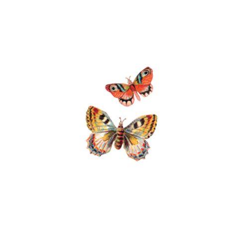 Mariposa Butterfly Vinyl Wall Decals Bed Bath  Beyond Vinyl - Vinyl wall decals bed bath and beyond
