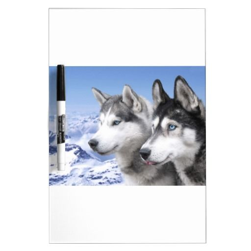 Siberian Huskies Dry Erase Whiteboards Dog Themed Dry Erase Boards