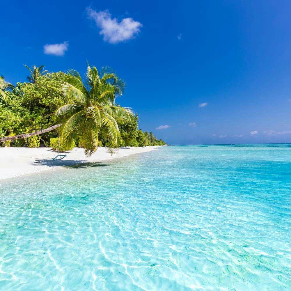 Fiji Beaches: Iphone Wallpaper Sea, Beach, Sea
