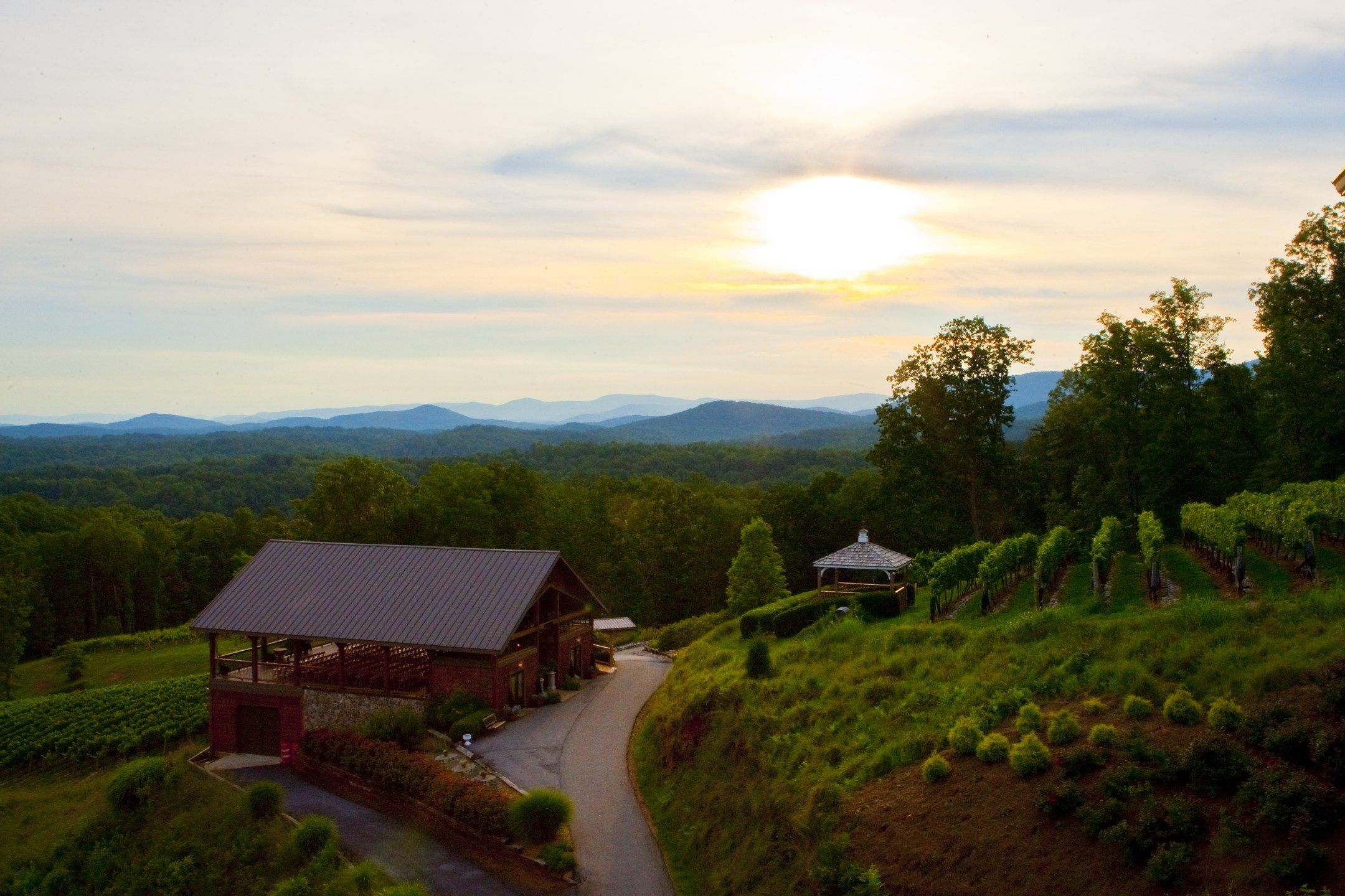 Wineries in Dahlonega GA That You Must Try  Couple