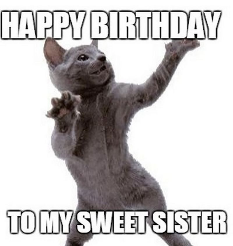 91 Happy Birthday Sister Memes For Your Sibling That Is Also A Friend Happy Birthday Sister Funny Happy Birthday Funny Happy Birthday Funny Humorous