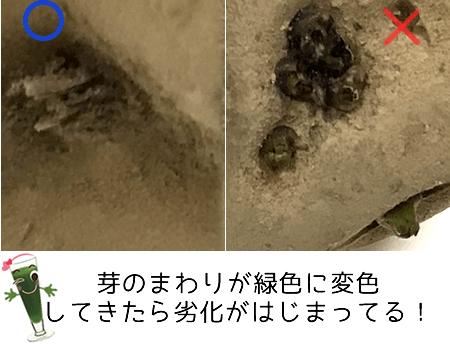 熊谷守一 蟻 日本のイラスト 日本画 画家