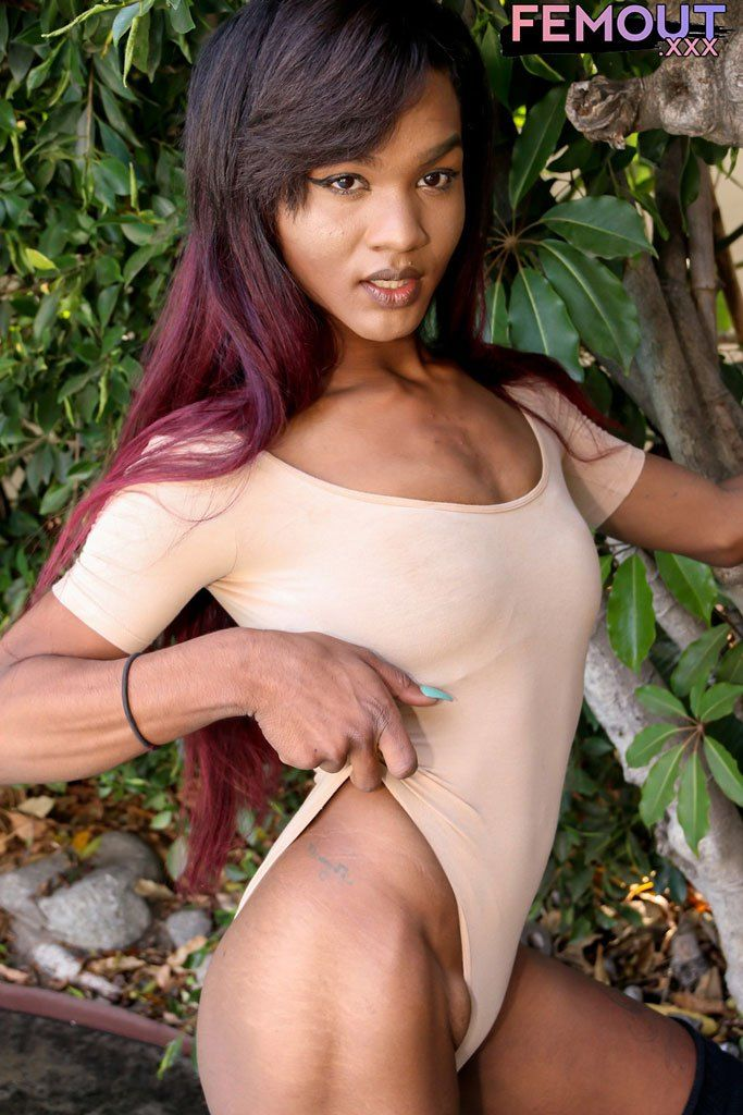 Hung Ebony Shemale Alaska