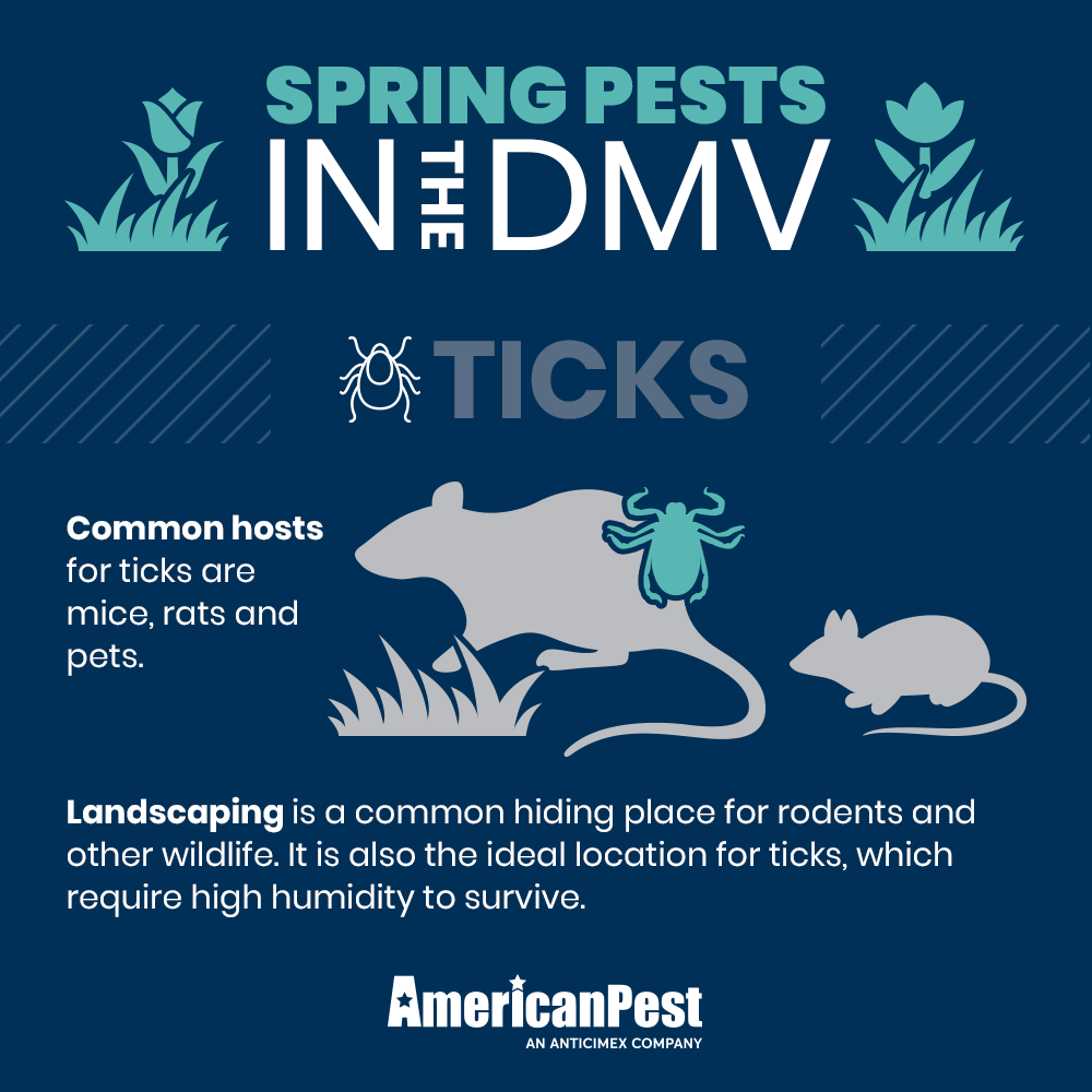 National Pest Management Month Pests, Pest management