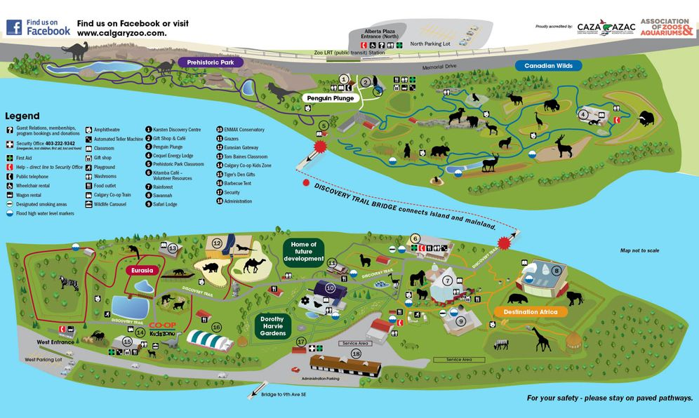 Calgary Zoo Map Zoo Map | Calgary Zoo | THEME PARK & ZOO | Zoo map, Map, Augmented