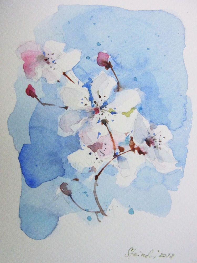 Original Aquarell Kirschblute Grosse 10 5x14 8 Cm Postkarte Ebay