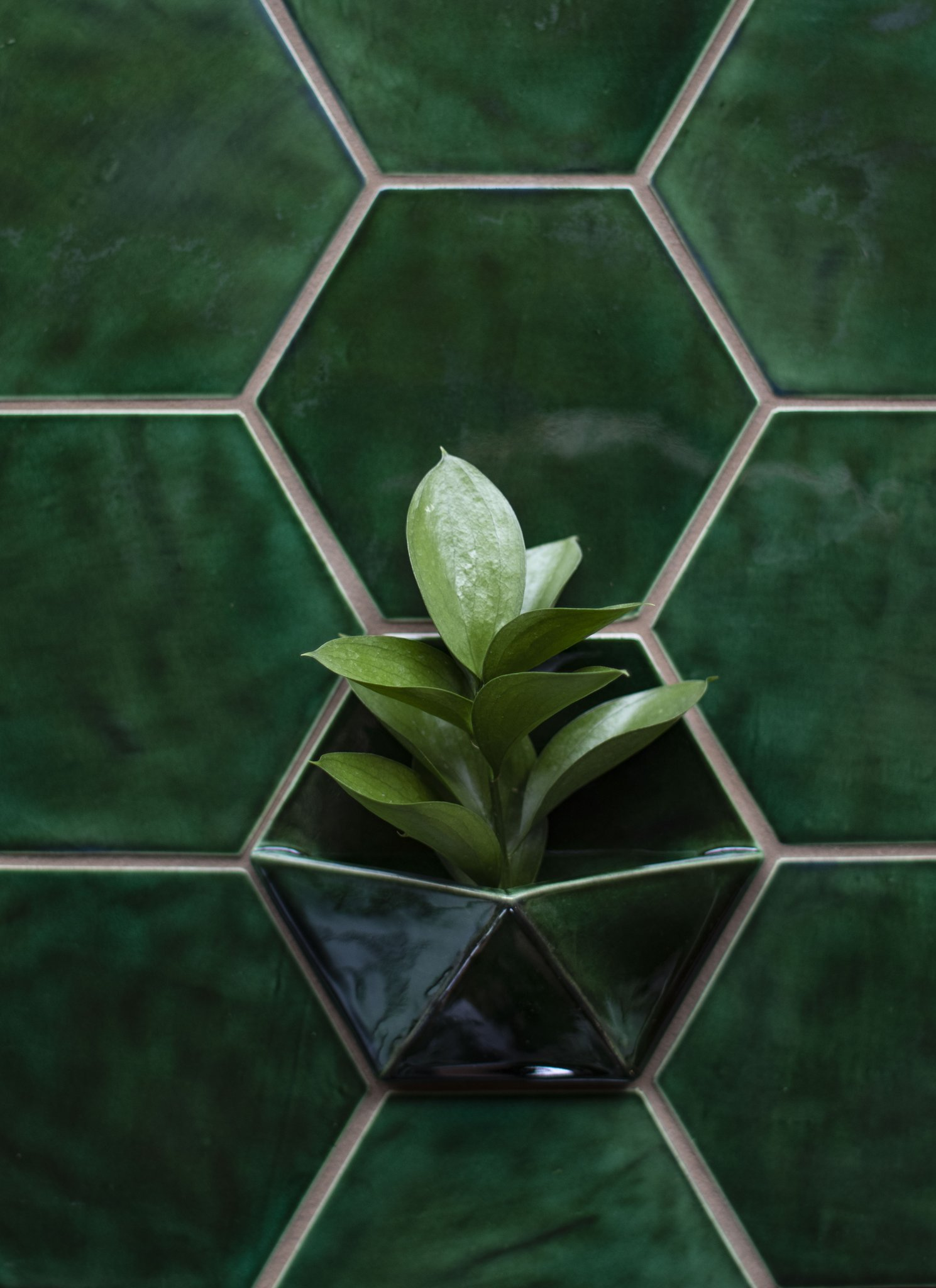 Ceramic Wall Planters to Add to Your Tile   Ceramic wall ...