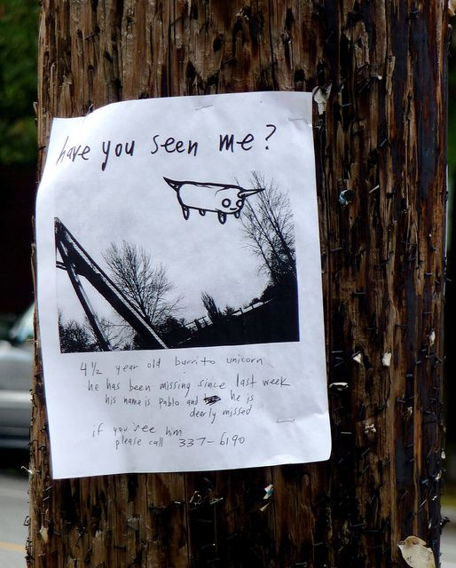Have You Seen Me?  Well have you?  Please post this everywhere, stat!