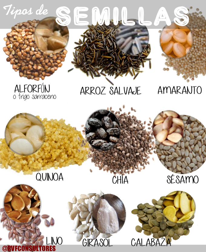 Semillas Tipos Rvf Png 680 831 Tipos De Legumbres Recetas Con Legumbres Cereal Saludable