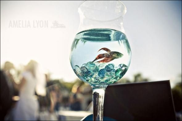 beta fish center pieces...hers would be more extravagant but love ...
