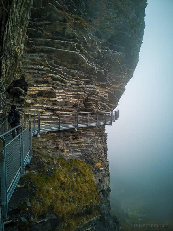 Eiger-Panoramaweg: vom First über den Bachalpsee zur Bussalp