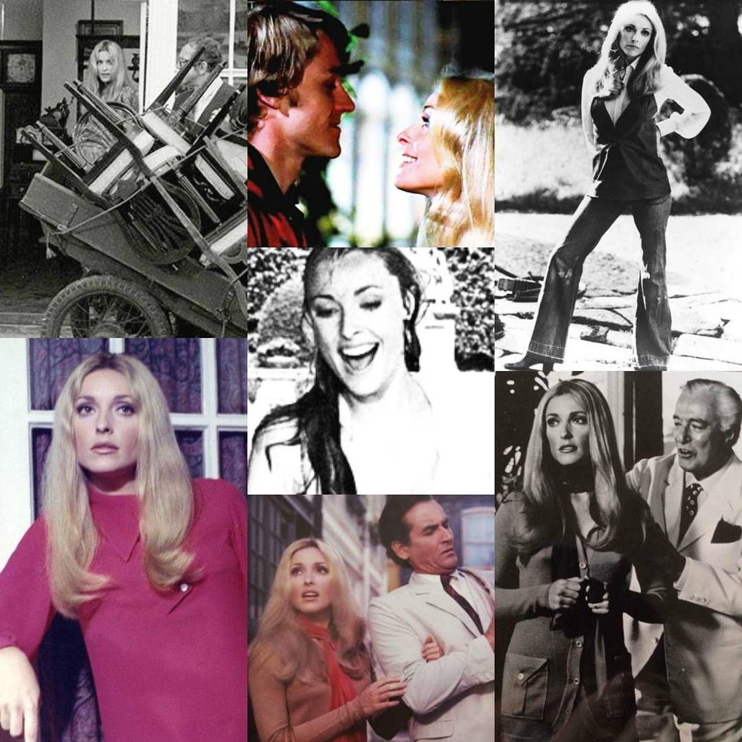 12+1 ( The thirteen chairs ) 1969. #sharontate  sc 1 st  Pinterest & 12+1 ( The thirteen chairs ) 1969. #sharontate | Sharon Tate ...