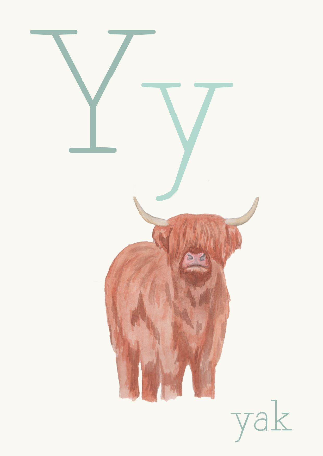 The Y Is For Yak Another Fact Did You Know That 90 Of