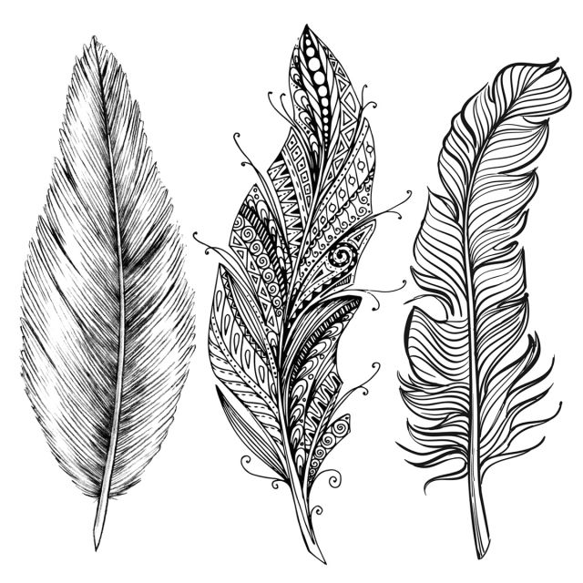 Line Art Feather : Drawspace overview use lines to draw a feather