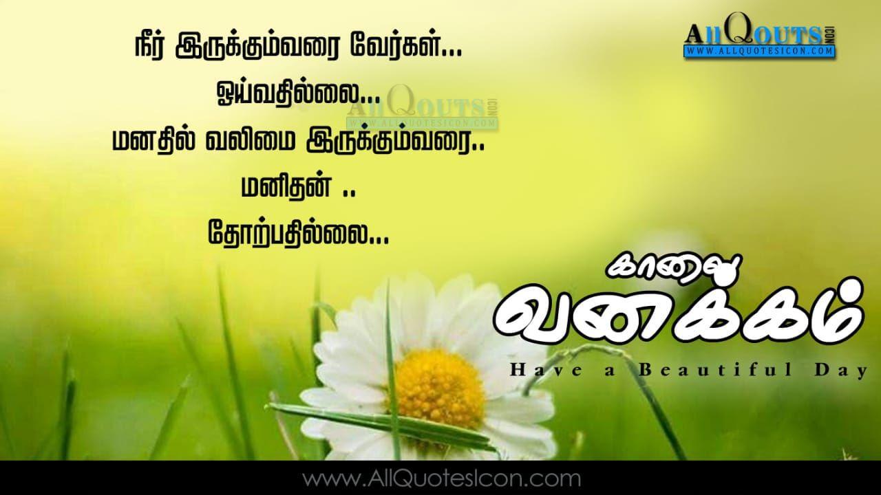 Pin By Balaji On Language Good Morning Inspirational Quotes Good Morning Quotes Motivational Good Morning Quotes
