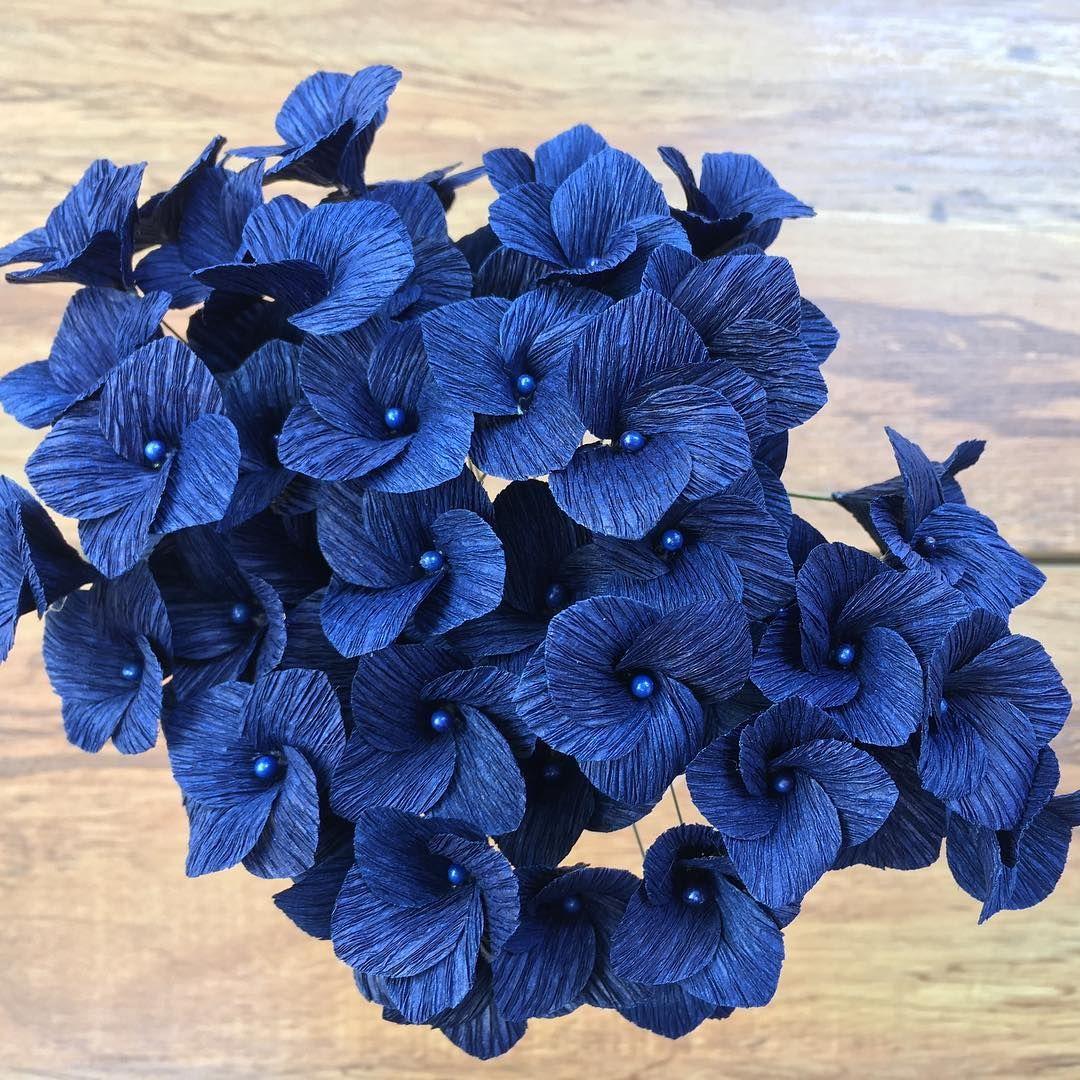 Bellezas Llenas De Color Hortensia Hydrangea Hydrangealove - Color-hortensia