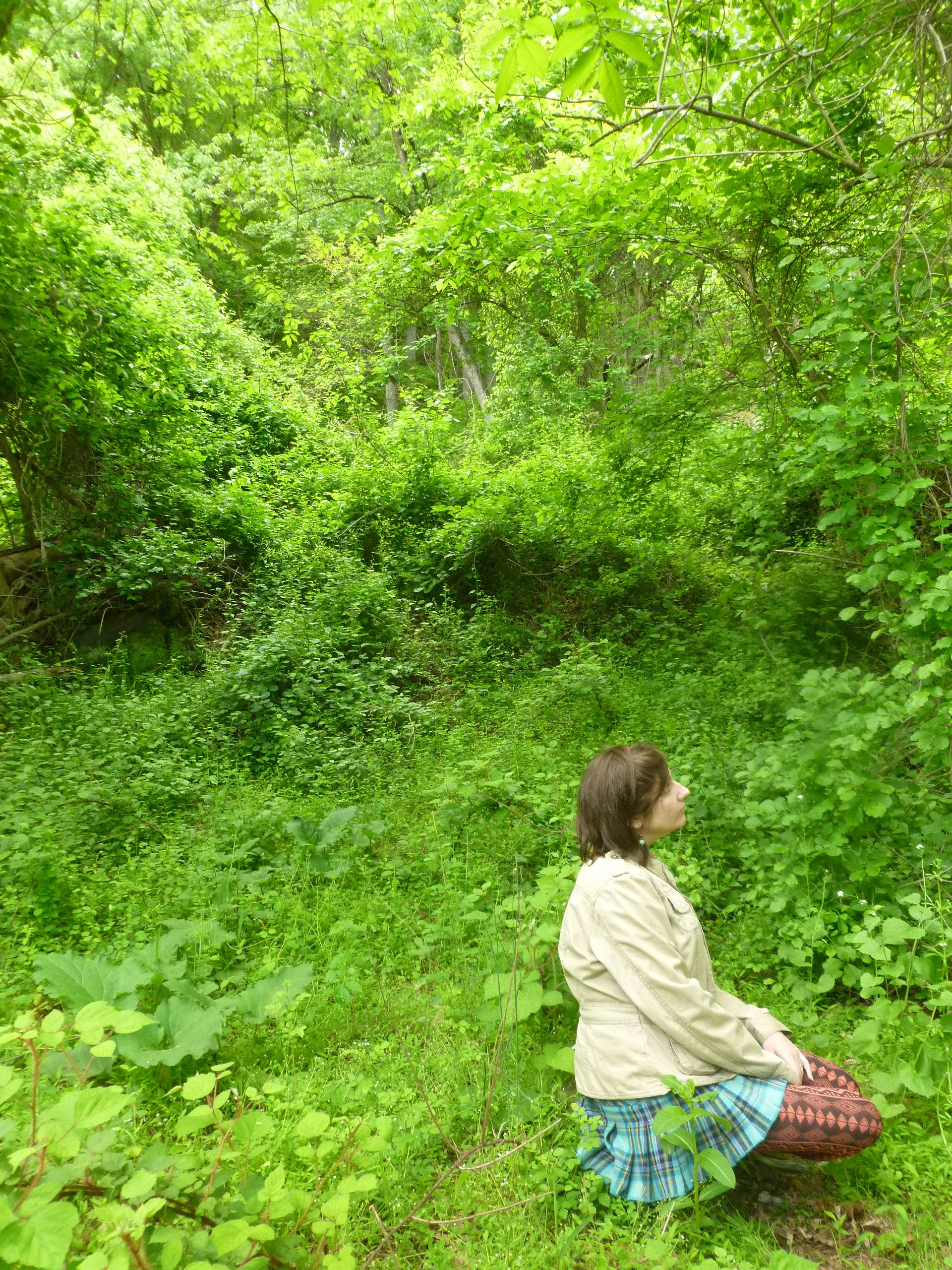 staging: patapsco state park holofield are perfect for fantasy- sci-fi? cosplay