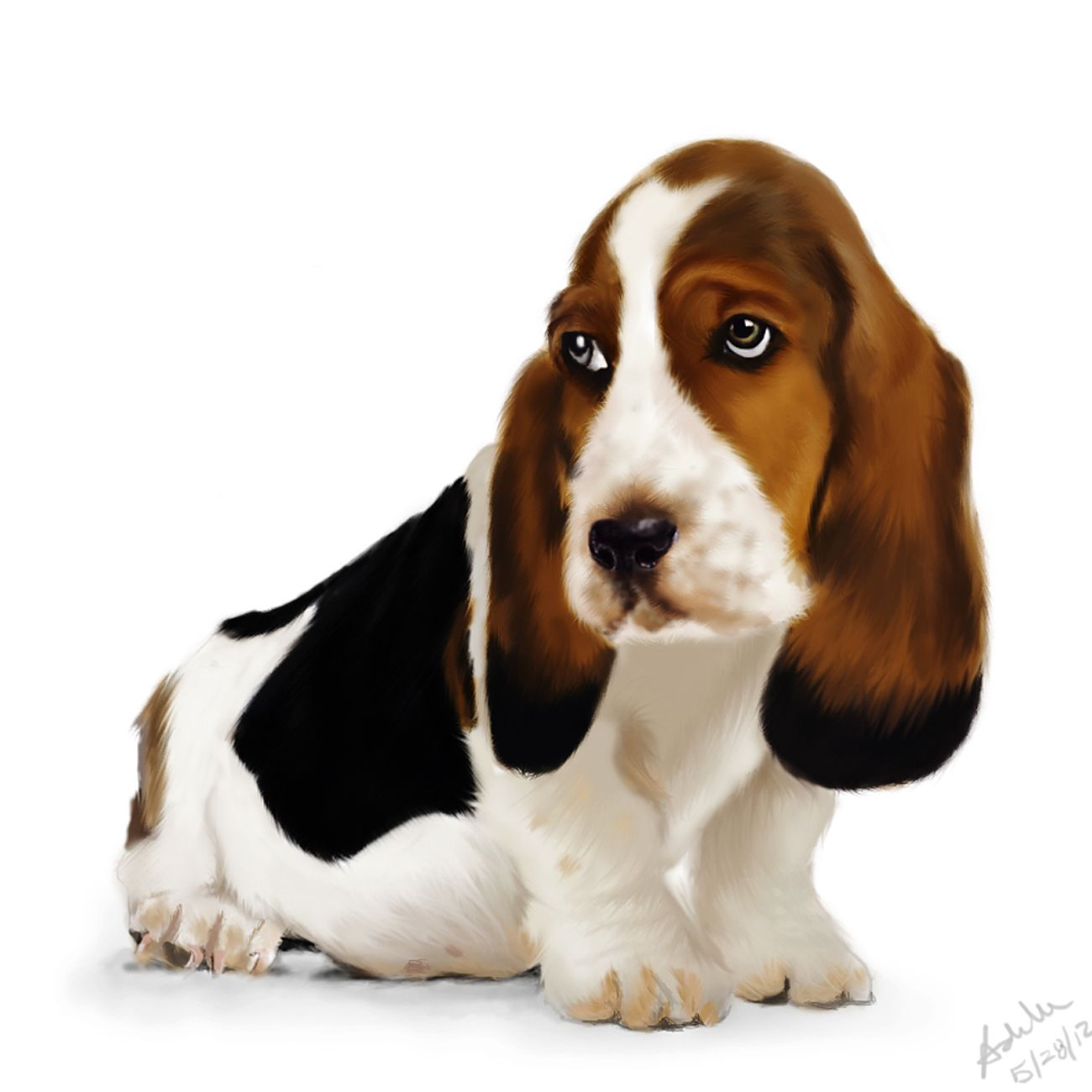 Boy Dog Names Cute Naming Ideas For Your Male Puppy Hound