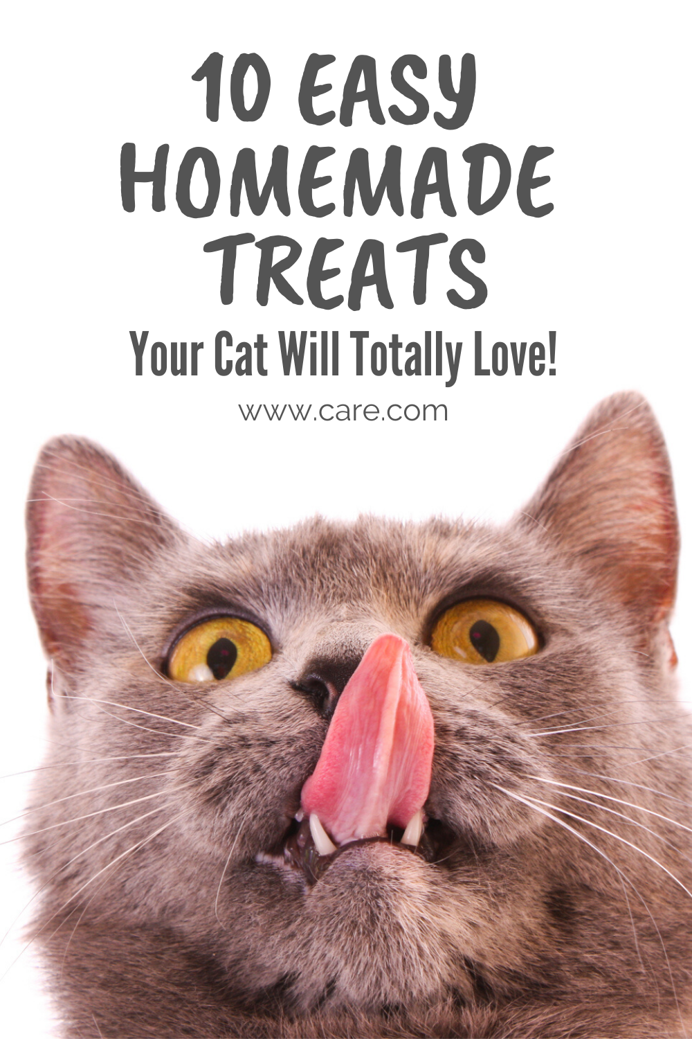 10 Homemade Treats Your Cat Will Love In 2020 Pet Treats Recipes Homemade Kitten Treats Homemade Cat Food