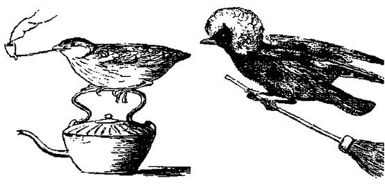 Edward Lear's Complete Book of Nonsense-The Grandfather of the absurd. A rural, runcible raven on a broom, nutcrackers and sugar tongs running away together, Jumblies going to sea in a sieve, an owl and a pussycat forming a romantic attachment and a lonely Quangle Wangle Quee with an enormous hat.