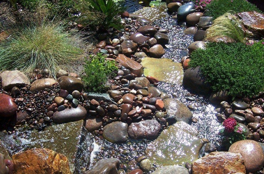 Pin by Jo on Garden build | Tropical backyard, Backyard ...