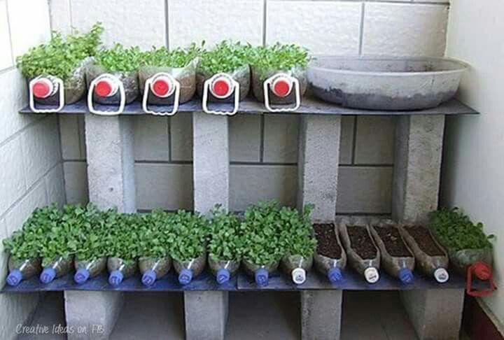 Envases reciclables para dar vida :)