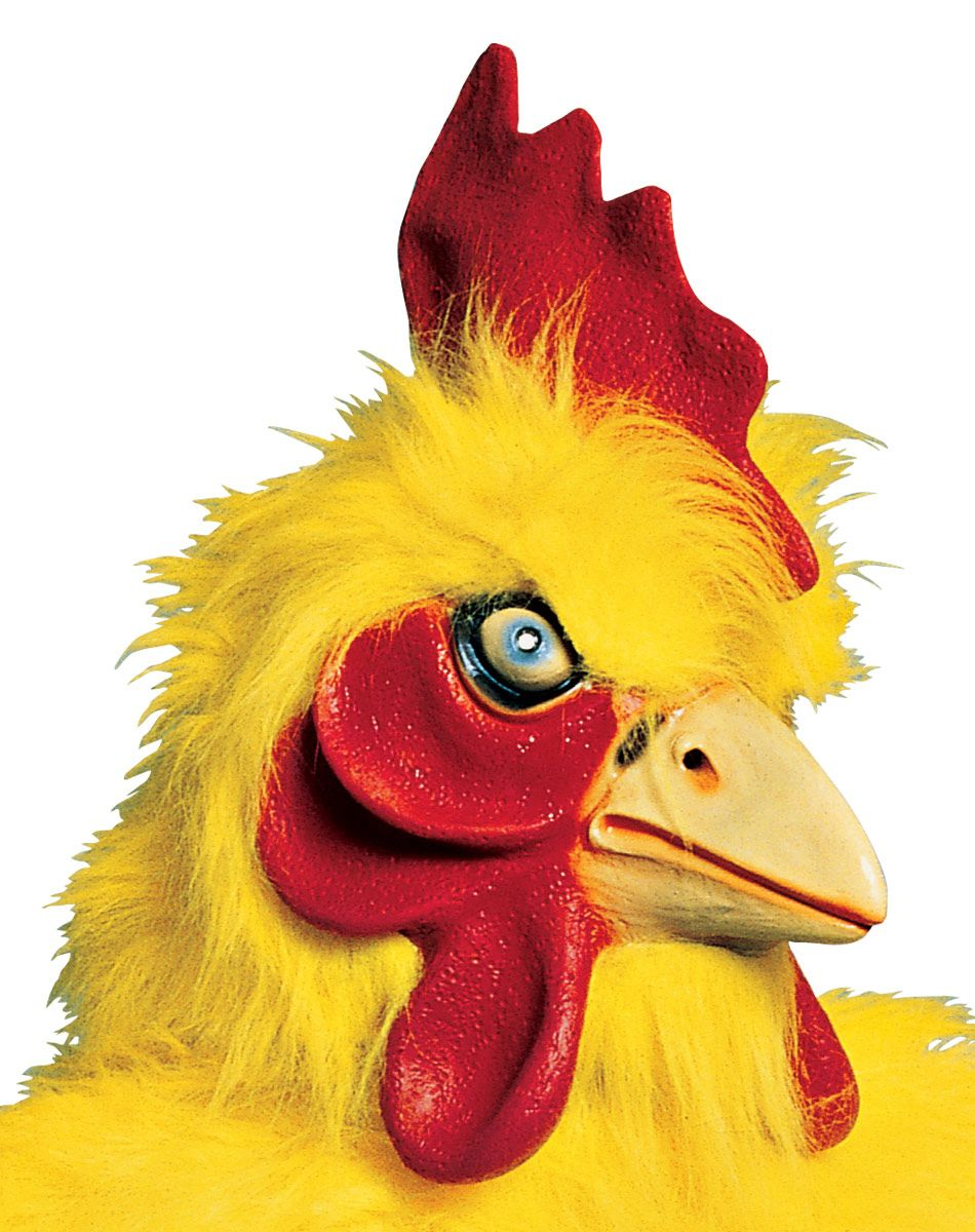 Supreme Chicken Mask. Cliff could be Peter Griffen and I could be ...