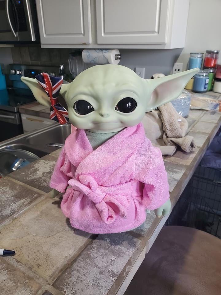 Baby Yoda Popcorn Dog In 2020 Yoda Funny Funny Star Wars Memes Yoda Meme