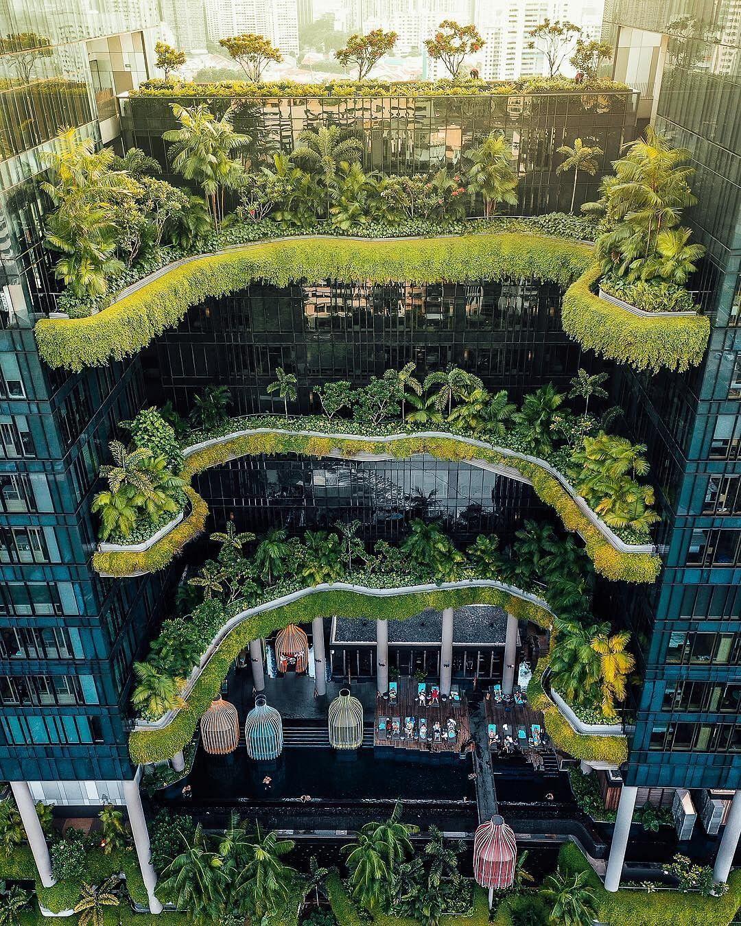 Green Houses Green City Grüne Stadt Bewachsene Häuser
