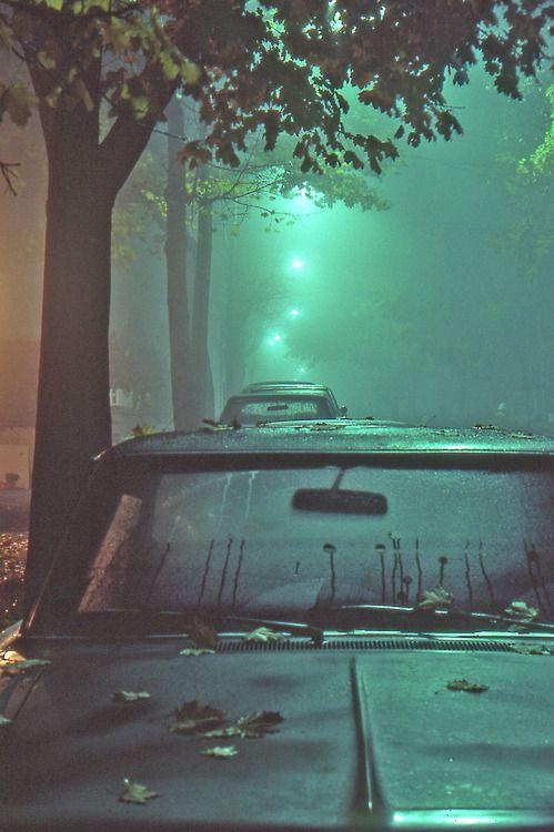between fog and rain Fotografía nocturna, Fotografía
