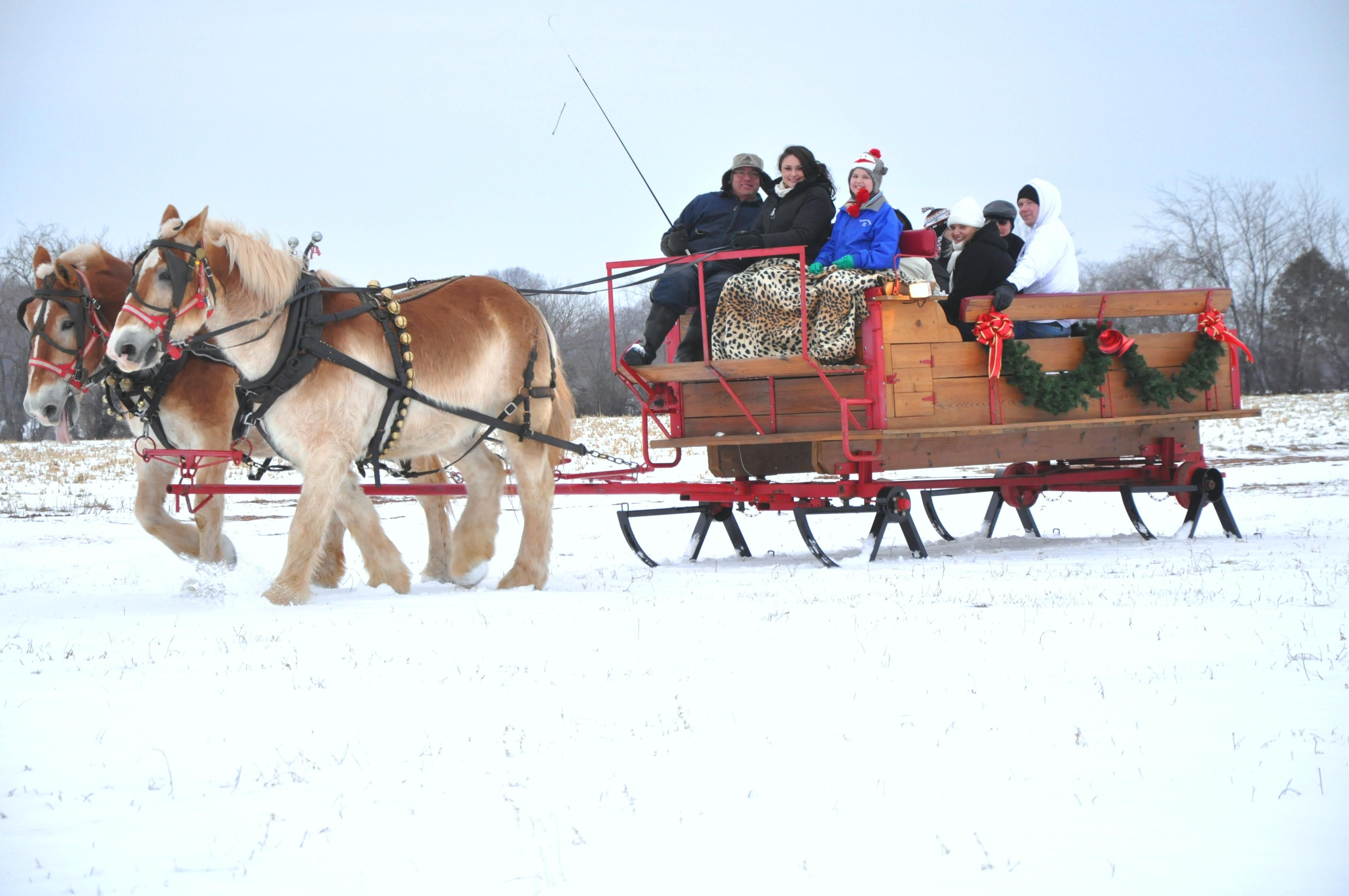 pin snow ride carriage - photo #23
