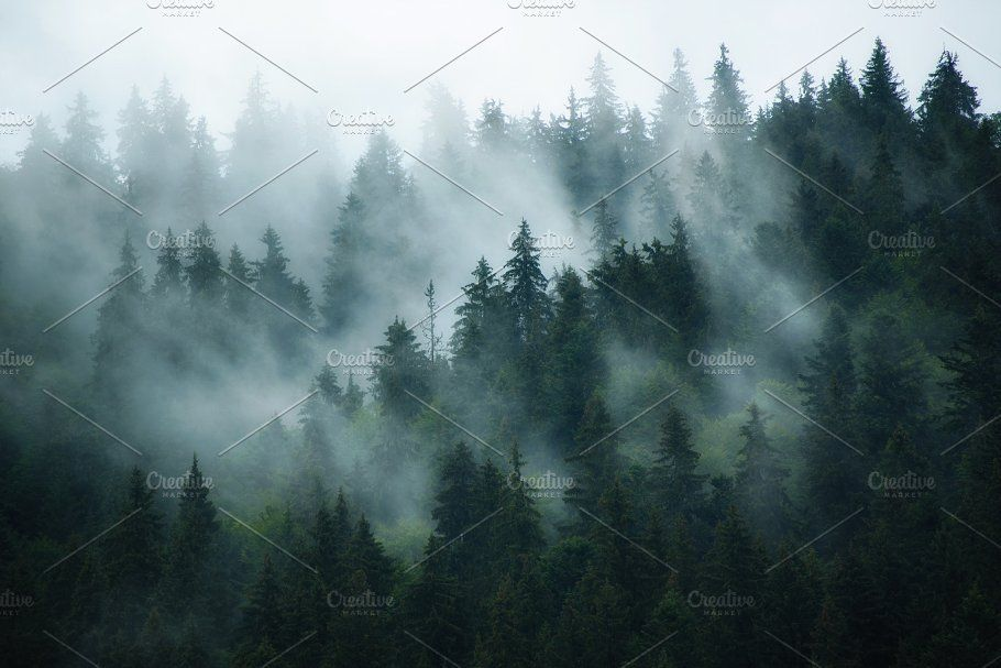 Misty Mountain Landscape Mountain Landscape Fantasy Landscape Landscape