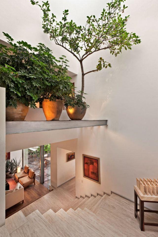 intérieur-moderne-design-plantes