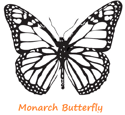 Butterfly Coloring Pages Butterfly Coloring Page Butterfly Drawing Butterfly Template