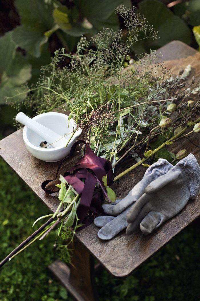 Puutarhassa Garden Vignettes Suvi Sur Le Vif Lily Heilpflanzen Gartenarbeit Garten
