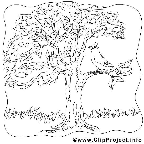 Ausmalbild Vogel auf dem Baum | tree and leaves coloring | Pinterest ...