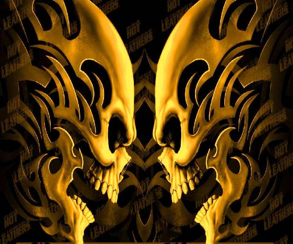 Fond D Ecran Hd Skull Head Skull Wallpaper Hd Skull Wallpapers Skull